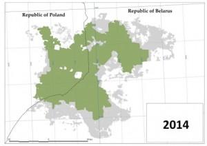 Puszcza Białowieska 2014
